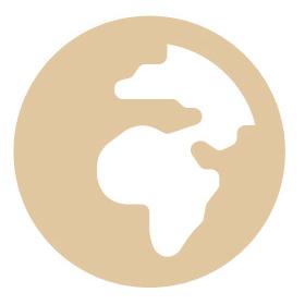 Global Icon